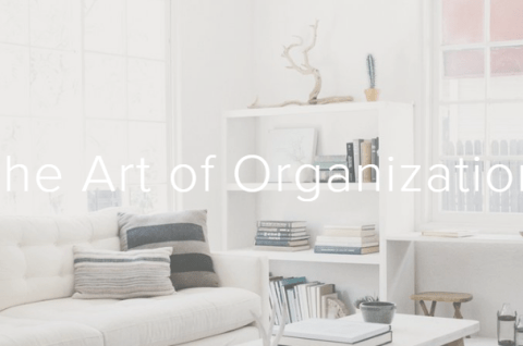 professional organizer los angeles