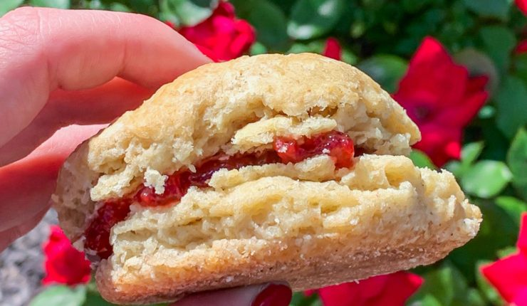 Sourdough biscuit with strawberry champagne jam in the center held in front of a rose bush