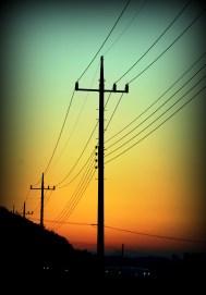 Telephone Pole 3