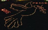 candle-art-peace-dove_Web