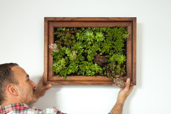 Decorating with succulents is such a huge trend right now. Here are 10 amazing ways that you can use succulents to liven up your home!