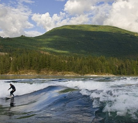 Surf Skook