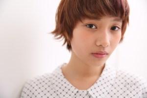 endlink白澤_15-04-21_181