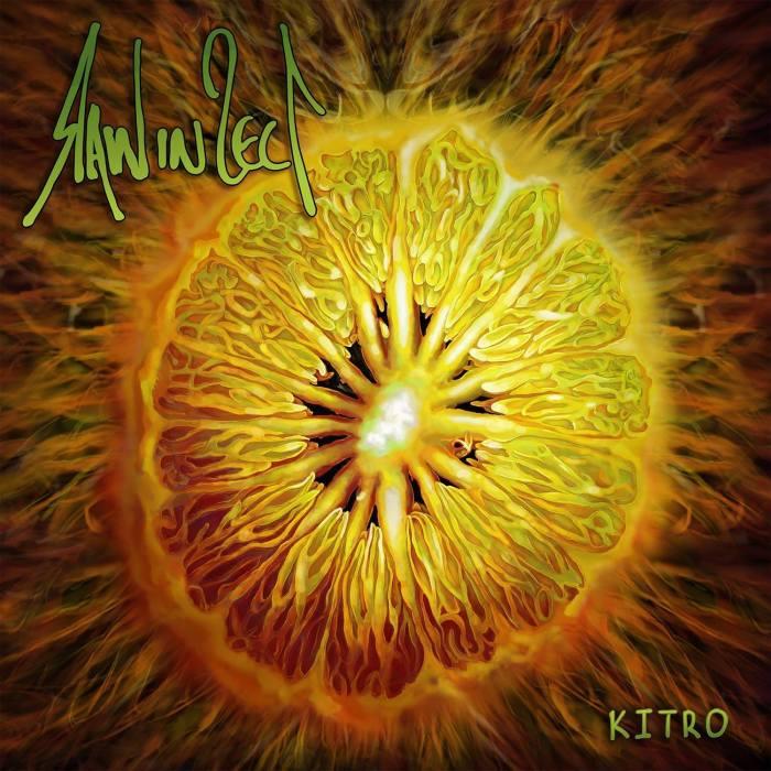 "raw in sect cover copertina album ""kitro"" foto"