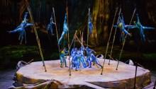 Nuovo spettacolo per Toruk - Il Primo Volo venerdì 15 febbraio alle ore 16:30