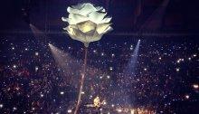 Shawn Mendes concerto Unipol Arena Bologna sabato 23 marzo 2019