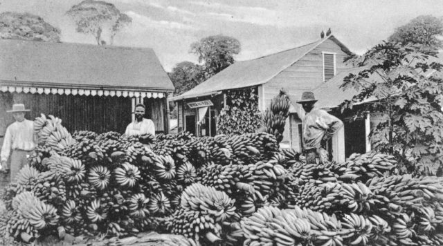 united fruit company coup in guatemala