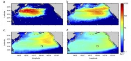 Japón comienza a propósito Dumping 100s de toneladas de agua radiactiva de Fukushima Into The Pacific University Fukushima La radiación de New South Wales 460x216