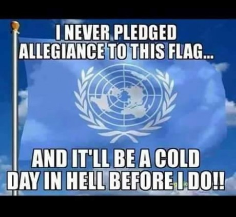 I Never Pledged Allegiance To This Flag