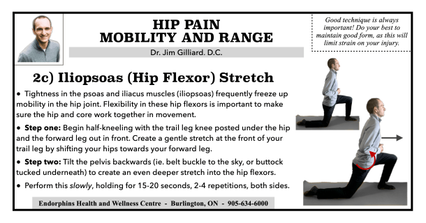 Iliopsoas Hip Flexor