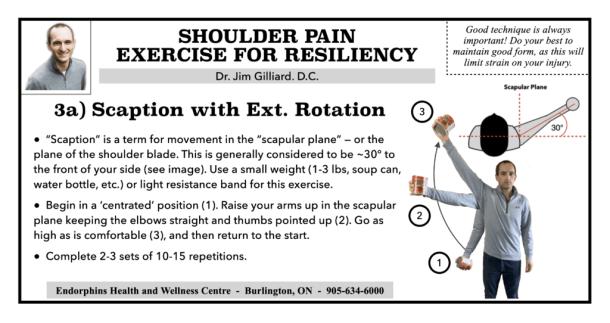 Shoulder Exercise Scaption