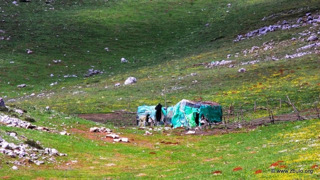 They live during the summer on their meadows in shacks, riding to the village only to sell milk products.