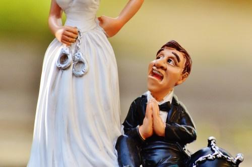 結婚式やりたくない空飛ぶペンギン社