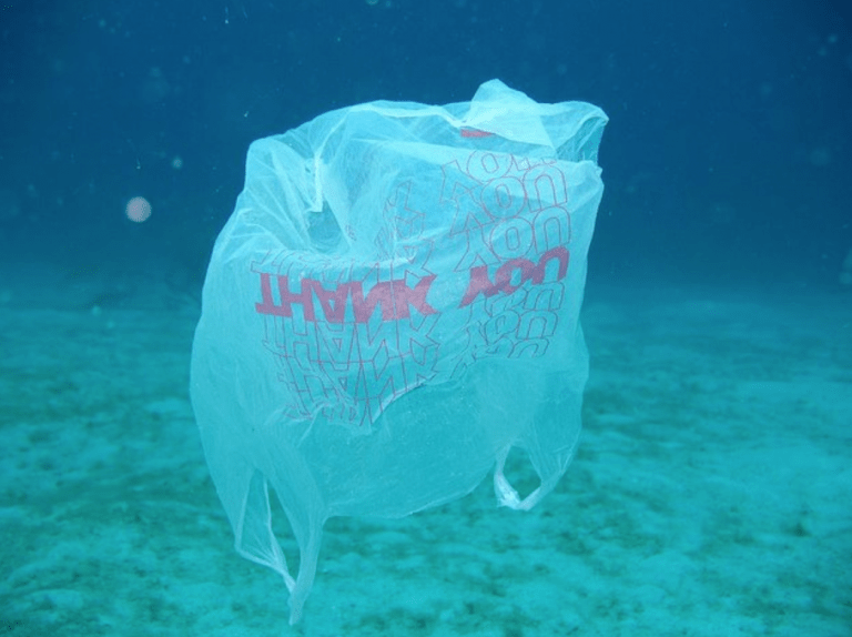 To use or not to use? The plastic bag question