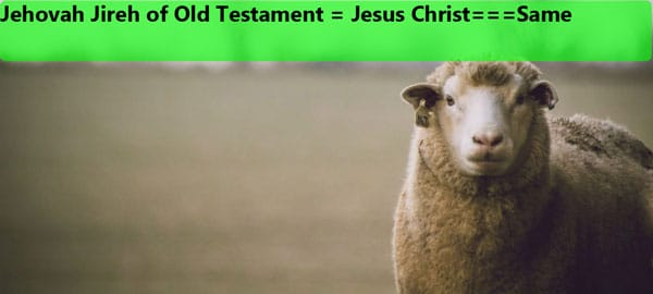 Jehovah Jireh of Old Testament
