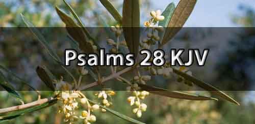 psalm 28 kjv