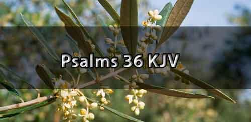 psalm 36 kjv