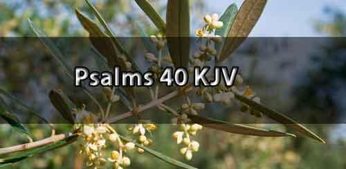 psalm 40 KJV