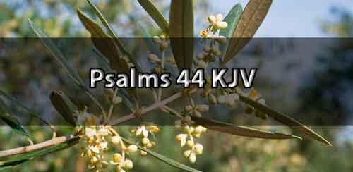 Psalm 44 KJV