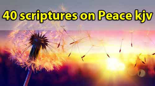 Scriptures about peace