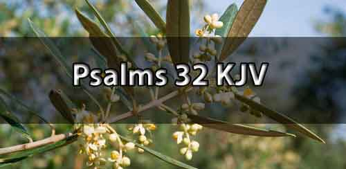 psalm-32