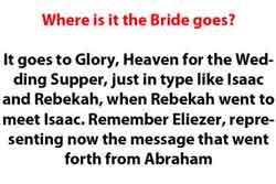 bride rapture