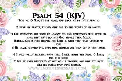 Psalm 54 King James Version (KJV)