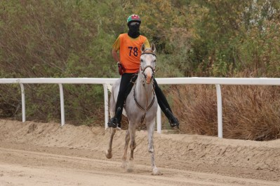 Strong S S  Stables best in final sprint - Endurance World