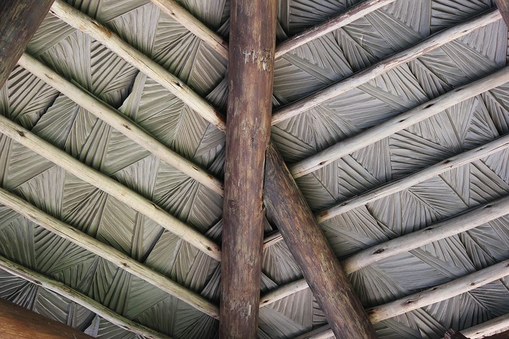Viva palm can be used for thatch umbrella