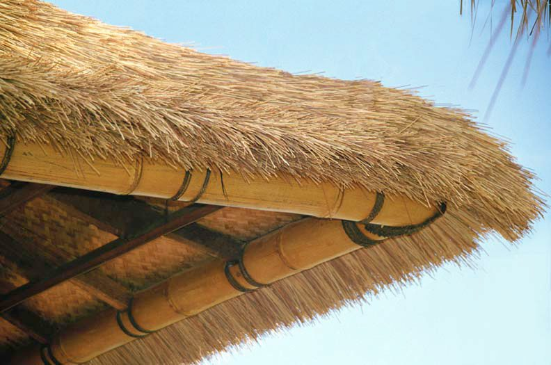 How to Avoid Decay and Rot on Natural Thatch Roofs