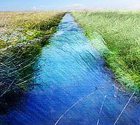 Orillas del río