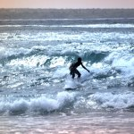 ENED surfing