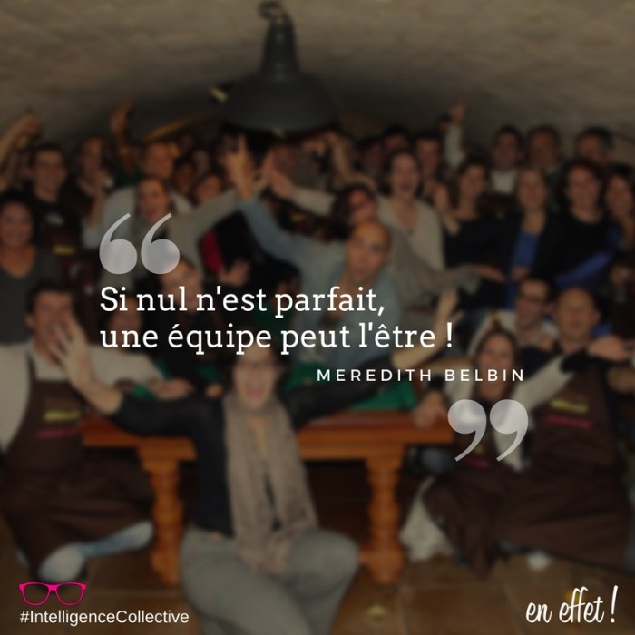 ENEFFET QUOTE INTELLIGENCE COLLECTIVE MEREDITH BELBIN