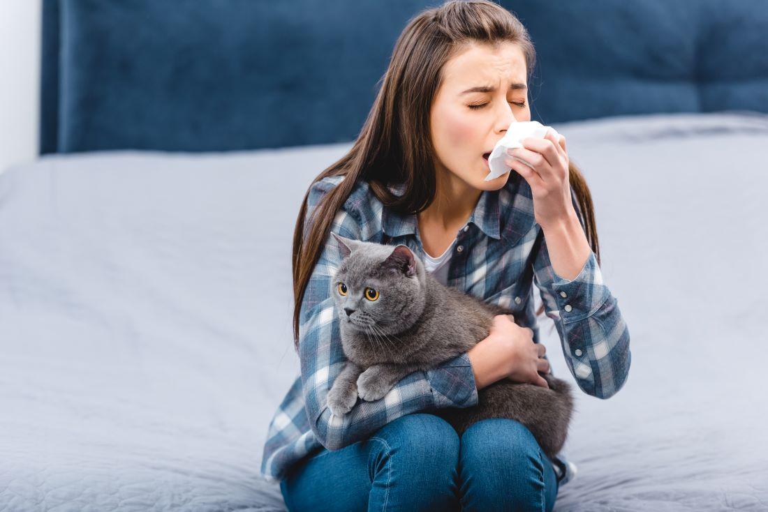 ¿Puedo vivir con mi gato si le tengo alergia?