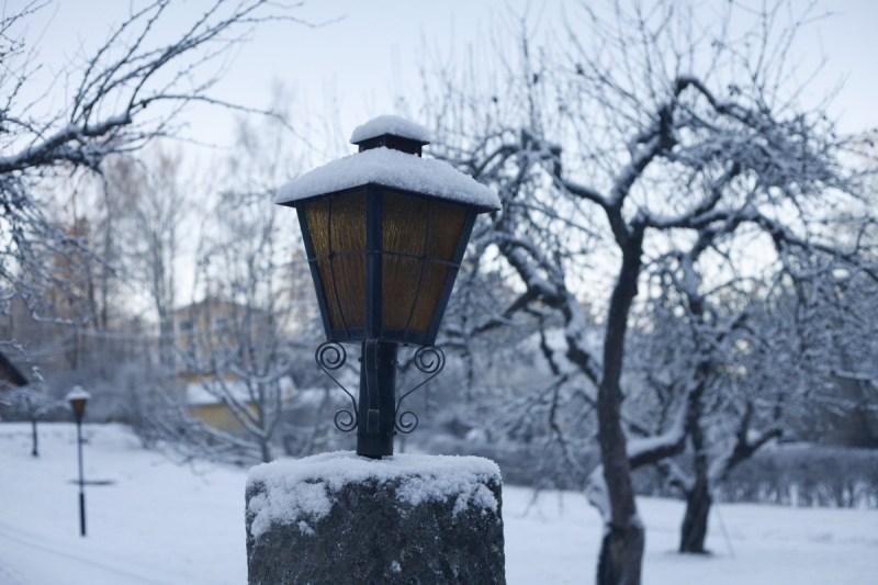 Vinterlykta
