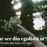 Vilken är din egolista?
