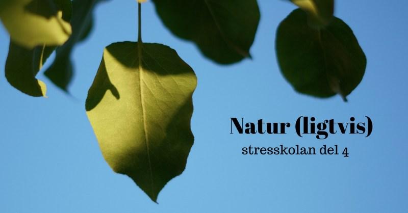 stress behandling del 4 stresskolan