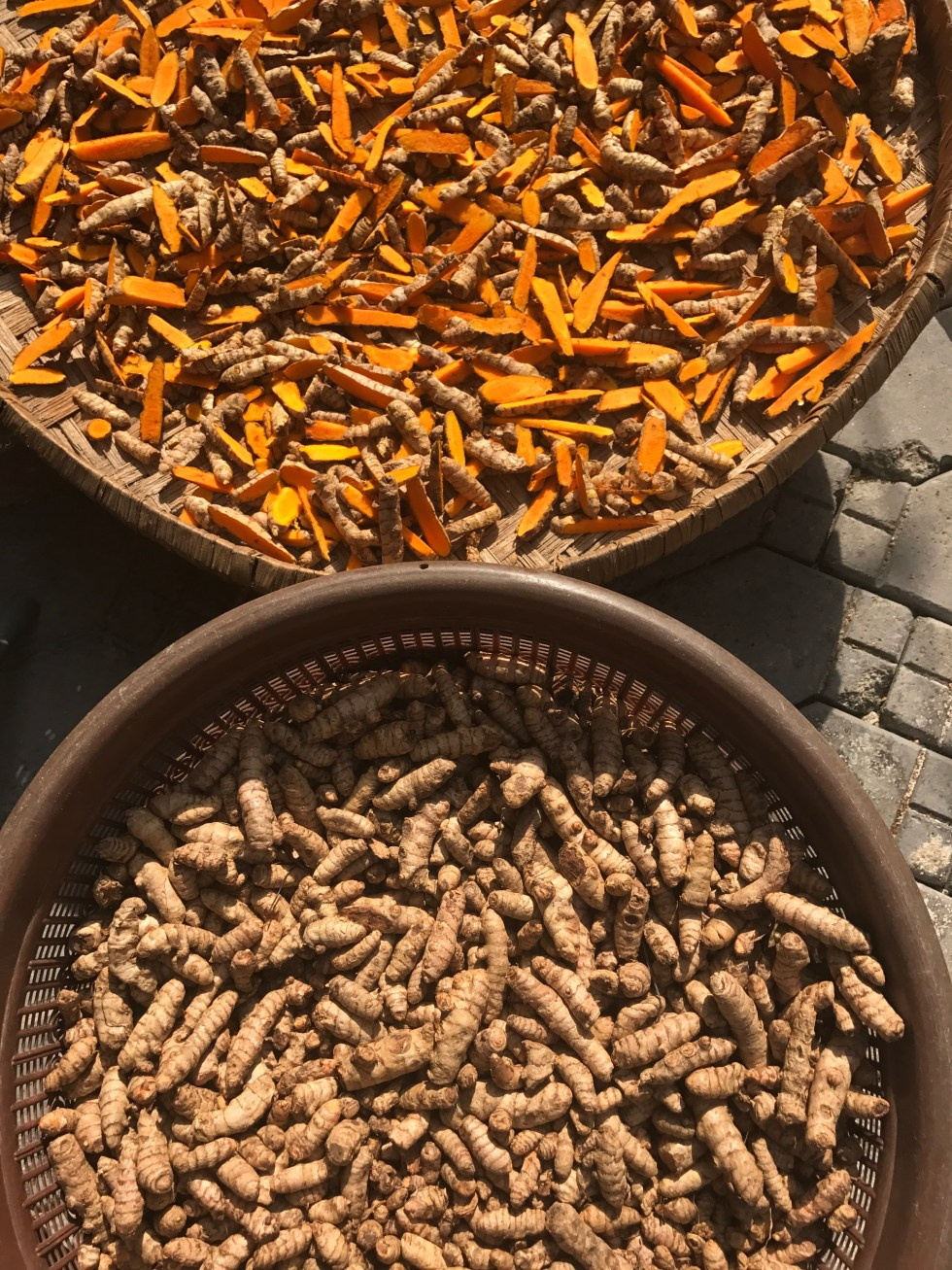 Shredded raw turmeric, processing fresh turmeric