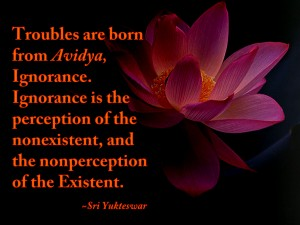Troubles are born from Avidya, Ignorance.  Ignorance is the perception of the nonexistent and the nonperception of the Existent. - Sri Yukteswar