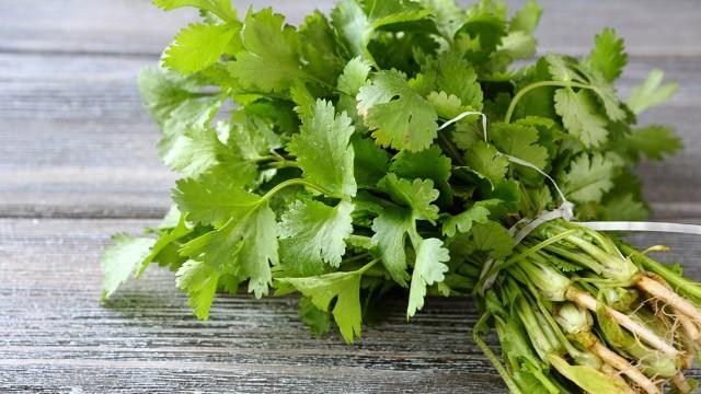 7 Jenis Dedaunan Aromatik yang Sering Digunakan untuk Masakan