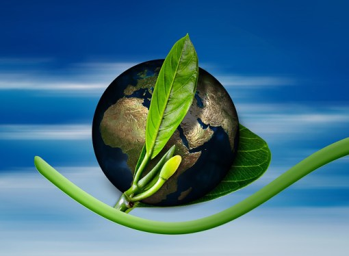 GGF obezbjedio 25 miliona eura od OeEB za nastavak zelenog finansiranja