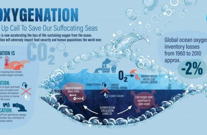 IUCN upozorava: U oceanima je sve manje kisika!