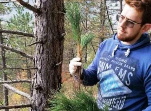 Jablanica: Posađeno 500 sadnica crnog bora i 125 sadnica smrče