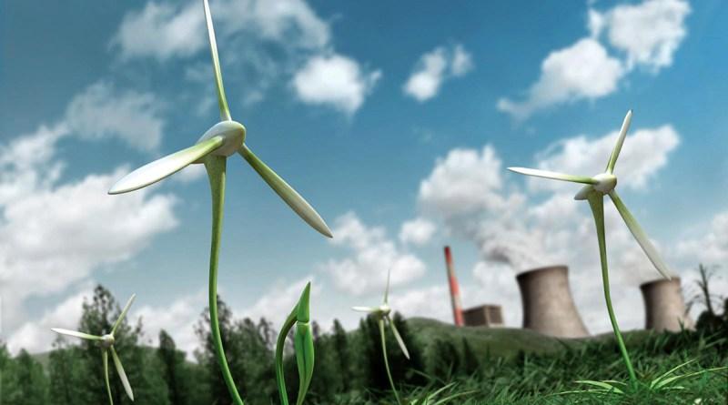 Крупные компании стимулируют развитие чистой энергетики. Может ли малый бизнес сделать то же самое?