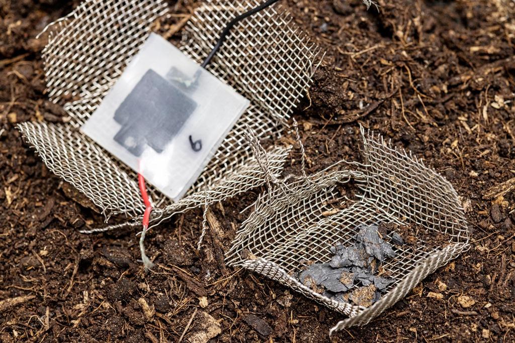kompostierbarer-mini-kondensator