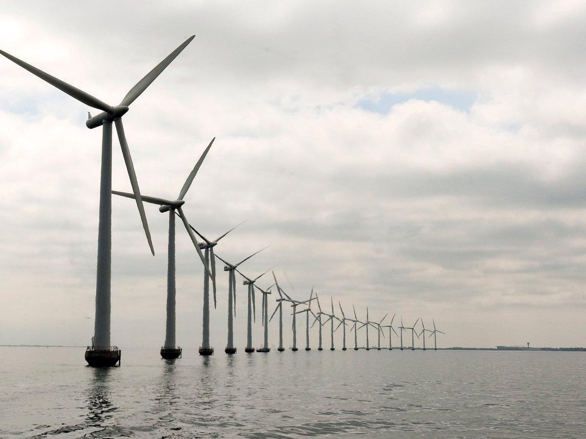 An offshore wind farm in Denmark.