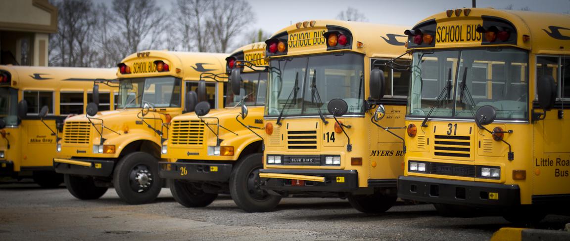 A row of school buses.