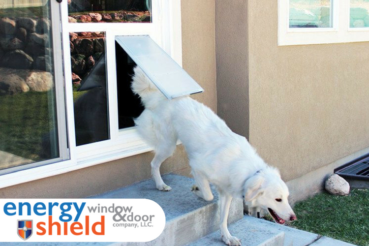 sliding glass pet door