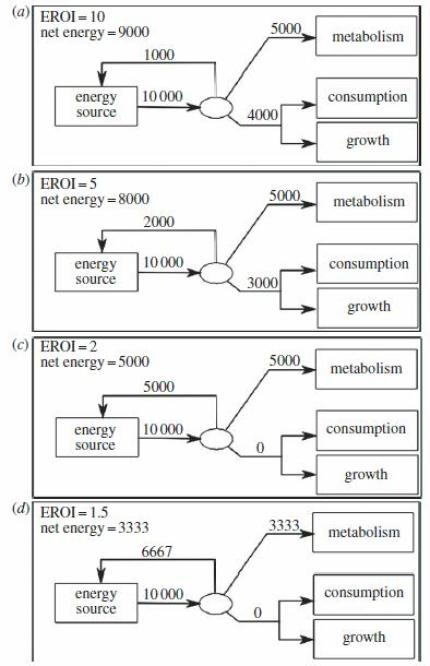 Figure 5. (a-d) Flow diagrams relating net energy, EROI and gross energy production for a hypothetical Economy A. Each diagram describes the energy flows according to a different EROI, where the EROI is (a) 10, (b) 5, (c) 2 and (d) 1.5