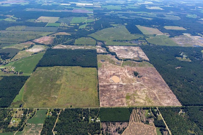 RWE's Hickory Park Solar Project With Co-Located Storage Facility Under Construction